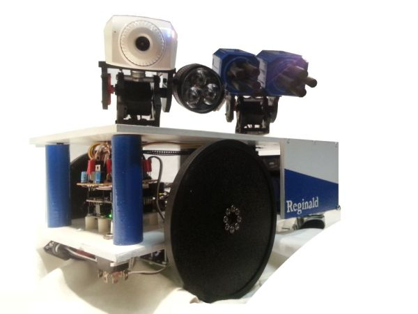 Reginald: a UDP surveillance bot