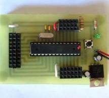 DIY Arduino or The DIY-Duino