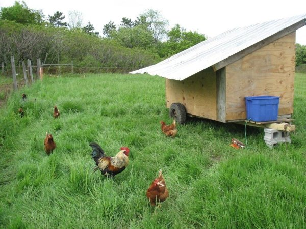 Mobile Chicken Coop with some automation using Arduino