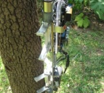 Tree Climbing Robot using Arduino