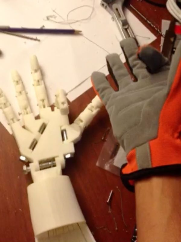 DIY Robotic