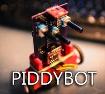 PIDDYBOT – A Self Balancing Teaching Tool