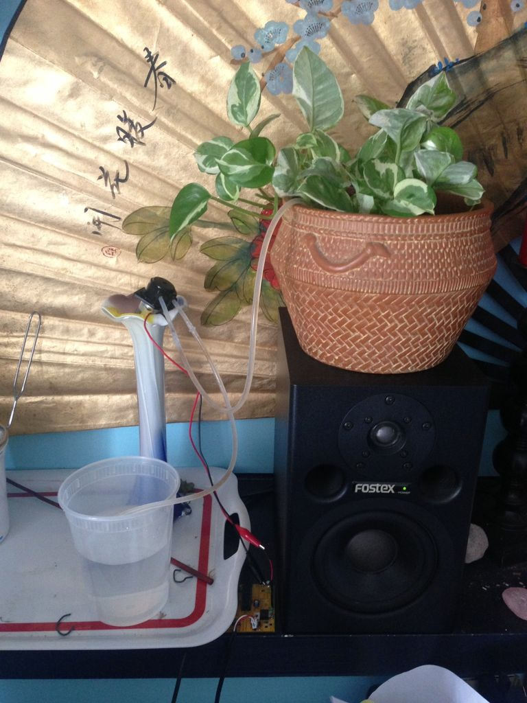 Automatically water your small indoor plant using Arduino + pump