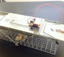 Critter Twitter Trap using Arduino