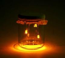 LED firefly Jars