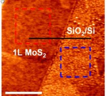 Scientists discover a better metal contact that improves two-dimensional transistor performance