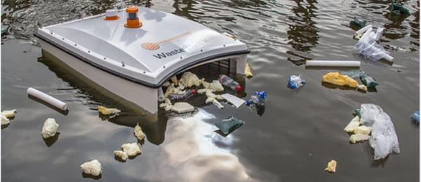 Trash-Eating Are Taking Over Harbors Worldwide