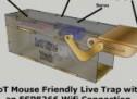 IoT Mouse-Friendly Live Trap