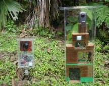 MISS NOTHING WITH A HACKED 360 DEGREE CAMERA TRAP