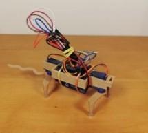 Robotic Rat