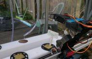 Autonomous Basil Farm With Robot Arm!